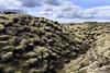 Skaftáreldahraun (Boganeer) Tags: skaftáreldahraun laki lavafield lava iceland ísland eruption volcano lichen landscape canon canoneos canon6d clouds