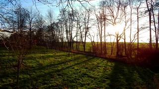 December afternoon