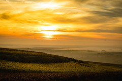Palatinate Vineyards II. Autumn Sunrise. (icarium.imagery) Tags: canoneos5dmarkiv canonef85mmf12liiusm plant landscape travel nature landschaftterrain pflanze mist sunrise glow vineyard wine palatinate germany village morning pastel dreamy soft ngc