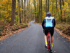 French Creek Loop (Garen M.) Tags: climbing color roadbike olympuspenf fall zuiko17mmf18 leaves cyclist frenchcreekloop birchrunville mikebauer pennsylvania wetpavement chestercounty countryside rain cycling frenchcreek