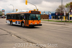 DSC01889.jpg (awstott) Tags: winnipegtransit bus newflyer d30lf transit new flyer 933