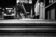 the dawn of a scene / lead to the platform (Özgür Gürgey) Tags: 2017 50mm bw d750 darkcity hamburg nikon rödingsmarkt architecture evening lowangle lowlight people stair station steps street subway train germany