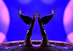 Rise of the twin phoenixes (GeorgeN66) Tags: splashart splash drops droplets water acrylicpaint macro closeup highspeedphotography flash sb200 r1c1 nikon 105mmf28 creative creativeart