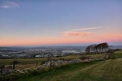 Morning colours (Gwenael B) Tags: horizon morning pink rose landscape cleevehill cleevecommon cotswolds uk england cheltenham paysage matin beforesunrise aube dawn trees stonewall muret