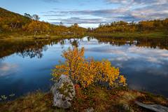 Autumn colors at Aunfjellet. (Reidar Trekkvold) Tags: xt2 xf1024ois aunfjellet autumn fujifilm harstad landscape natur nature nordnorge norway troms vann water