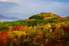 Osogovo Mountain - Bulgaria (Sayman K) Tags: osogovo mountain bulgaria sony a6000 revuenon 50mm f14 color