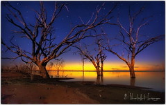 Earth provides enough to satisfy every man's needs, but not every man's greed (PhotoArt Images) Tags: australia medindeelake nsw photoartimages le
