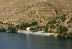 CP 592 (Nelso M. Silva) Tags: ir cp 592 regional douro linha comboio diesel vinhas
