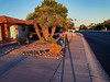 Long Story (oybay©) Tags: suncitywest arizona winter solstice deep long shadow silhouette sunset park beamoflight beam light color colors mountain clouds amazing bestphotograph nikon religious experience london sky landscape