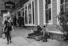 DSCF3693.jpg (RHMImages) Tags: dog bnw hippies monochrome fuji candid blackandwhite streetmusicians people nevadacounty streetphotography hipsters bw nevadacity fujifilm x100f