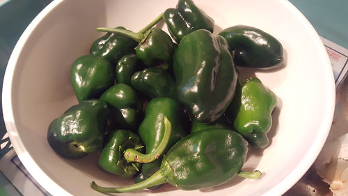 Peppers from my Tower Garden (these are the Irma survivors!)