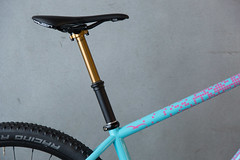 0083untitled-9132.jpg (peterthomsen) Tags: caletticycles coveypotter mtb
