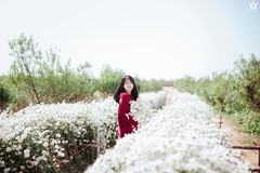 Photo: Đỗ Xuân Bút (ng.hoangkieutrinh) Tags: