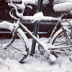#snow #bicycles #fortgreene #brooklyn