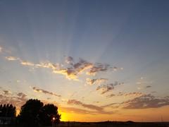 Last burst (darletts56) Tags: sun sunsets trees clouds saskatchewan samsungs8 prairies