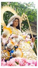 La Virgen Divina Pastora (Faithographia) Tags: faithographia faithography intramuros gmp igmp vivalavirgen madrededios santamaria materdei virginmary maria marianevent marianprocession grandmarianprocession