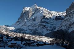 Wetterhörner mit Scheideggwetterhorn ( BE - 3`361 - Berg mountain ) - Wetterhorn ( BE - 3`701m ) - Mittelhorn ( BE - 3`704m ) - Rosenhorn ( BE - 3`689m ) in den Berner Alpen - Alps ( Westalpen ) ob Grindelwald im Berner Oberland im Kanton Bern der Schweiz (chrchr_75) Tags: christoph hurni schweiz suisse switzerland svizzera suissa swiss chrchr chrchr75 chrigu chriguhurni chriguhurnibluemailch dezember 2017 dezember2017 albumzzz201712dezember albumwetterhorn wetterhorn berner oberland kantonbern alpen alps berg montagne montagna mountain wetterhörner grindelwald