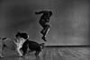 bis zum herzanschlag geflogen und alles war immer nur der anfang (sommerpfuetze) Tags: dogs animal micha people motion jump life love bw sw menschen hunde tiere schwarzweis blackwhite mono springen sprung pepe bulldogge dackel fehlst lebenslust grain