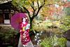 Mameryu - Maiko in Kyoto 02 (JUNEAU BISCUITS) Tags: maiko geisha japan kyoto gion portrait portraiture japanese kimono temple umbrella garden nikond810 nikon beauty