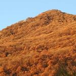 die Kraft der untergehenden Sonne färbt meinen Hausberg in ein kräftiges Orange thumbnail