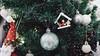 _DSC8466 (zzluckuxdzz) Tags: xmas christmas giangsinh noel joyeuxnoel merryxmas merrychristmas chaomunggiangsinh christmas2017