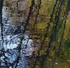 River Lednock (Edinburgh Nette ...) Tags: october17 glens rivers lednock reflections abstracts splash ripples
