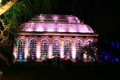 PALM HOUSE (ianharrywebb) Tags: iansdigitalphotos edinburgh xmas christmas fair nightshots rbg palmhouse iansdgitalphotos