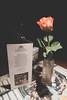 Bremer Ratskeller - Historic Eats (virtualwayfarer) Tags: bremen visitbremen germany europe european streetphotography streetsofbremen hanseaticleague hanseatic citybreak walkingtour deutsche hansa citycenter historiccenter bremerratskeller ratskeller winecellar placestoeat eatinginbremen wine finedining historicdining nordictb citybreakgermanycitybreakbremen alexberger virtualwayfarer citybreakfromdenmark bestofbremen