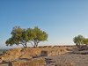 Ancient walls of Akragas (Giovamilo_90) Tags: sicily walls agrigento sicilia trees akragas panorama landscape sky blue
