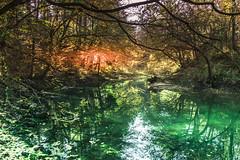 Verd, source of Ljubljanica (rlubej) Tags: notranjska rivers colors nature reflection