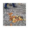 ... (ángel mateo) Tags: ángelmartínmateo ángelmateo granada andalucía españa paseodelostristes albaicín empedrado hoja otoño lluvia mojado nostalgia paseando cobblestone leaf autumn rain wet walking