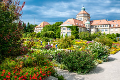Botanischer Garten pathways (Tony Shertila) Tags: 20170827150118 botanischestaatssammlung botanischestaatssammlungmünchen germany nymphenburgpalace schlossnymphenburg wittelsbach architecture baroque bavaria botanicle building clouds estate europe fountain garden gardens herbarium munchen munich outdoor palace plants sky münchen bayern botanischergartenmünchennymphenburg archutecture flower floral pond reflection lilie lily people tourist display park botanical path deu