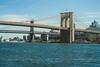 Brooklyn & Manhattan Bridges (essexdiver) Tags: bridge brooklynbridge manhattanbridge newyork usa olympus1240mmf28pro olympus omd em5mkii hudsonriver