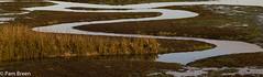 17-11-20: Meanders (Pam Breen) Tags: meanders