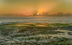 Sunrise Seascape with Sun Rays (Merrillie) Tags: daybreak rockshelf sunrise nature australia mountains water centralcoast sea sky newsouthwales rocks shoreline nsw photography brokenbay ocean crepuscularrays waterscape horizon coastal landscape outdoors seascape rocky coast dawn pearlbeach