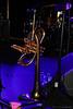 Christian Scott @ Jazz à Liège (Rick & Bart) Tags: belgië belgique luik liège jazzàliège live concert festival jazz funk music christianscottatundeadjuh christianscott trumpet canon eos70d rickvink rickbart reverseflugel custom adams