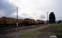 2885 XA1412 XA1403 shunting Kojonup 2 April 1982 (RailWA) Tags: railwa philmelling westrail 1982 railway station xa1403 xa1412 kojonup