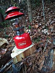 vintage Coleman lantern (Dave* Seven One) Tags: coleman colemanlantern model200a madeintheusa vintage classic gaslantern woodpile firewood backyard trees camping campinggear ztebladexmax