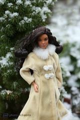 zoe in the snow (photos4dreams) Tags: barbie mattel doll toy diorama photos4dreams p4d photos4dreamz barbies girl play fashion fashionistas outfit kleider mode puppenstube tabletopphotography aa beauties beautiful girls women ladies damen weiblich female funky afroamerican afro schnitt hair haare afrolook darkskin africanamerican puppe blonde blond canoneos5dmark3 canoneos5dmarkiii spielzeug collectorsbarbie collector zoe blue dress gown bodice christmasbarbie2016 holidaybarbie2016