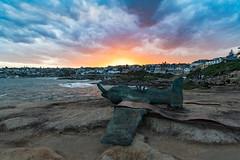 Airplane Sculpture - Bondi Beach (Corey Hamilton) Tags: beach bondibeach sculpturebythesea sunset sydney tamarama newsouthwales australia au