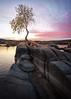 Watson-Lake-6511-Edit (Michael-Wilson) Tags: watsonlake prescott arizona tree clouds sunset sunrise michaelwilson rock granite lake water vertical
