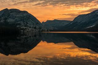 Tenaya Burn, Yosemite National Park