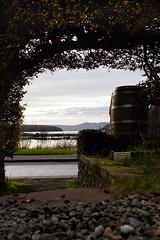 Balmaha Bunkhouse, Loch Lommond (BlairGibson) Tags: loch lommond arch november barrel path autumn leaves winter