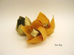 Fruit (Yara Yagi) Tags: origami paper papel flor flower fruit fruta physalis