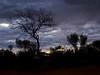 Last Glow (Padmacara) Tags: australia outback g11 sunset tree sky cloud