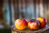 simplicity (auntneecey) Tags: apples quote bokeh simplicity 365the2017edition 3652017 day326365 22nov17
