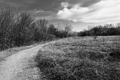 goin' up around the bend (fallsroad) Tags: tulsaoklahoma turkeymountain riversidepark nature natural woods forest path trail trees sky clouds blackandwhite bw monochrome