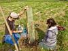 IMG_1864 (Potomac Conservancy) Tags: communityconservation treeplanting virginia leesburg whitesford loudouncounty growingnative volunteer 2017 october fall kids
