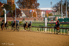 Race 5 - Not even close (Keith Drevecky) Tags: churchilldowns horse kentucky thoroughbred louisville