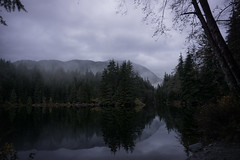 Foggy Lake (RomainL_CA) Tags: vancouver bc canada vancity british coloumbia raincouver autumn 2017 forest tree pine leave leaf trail hike north water blue rice lake lynn valley calm landscape wood cloud cloudy fog atmosphere mountain mountainside foggy